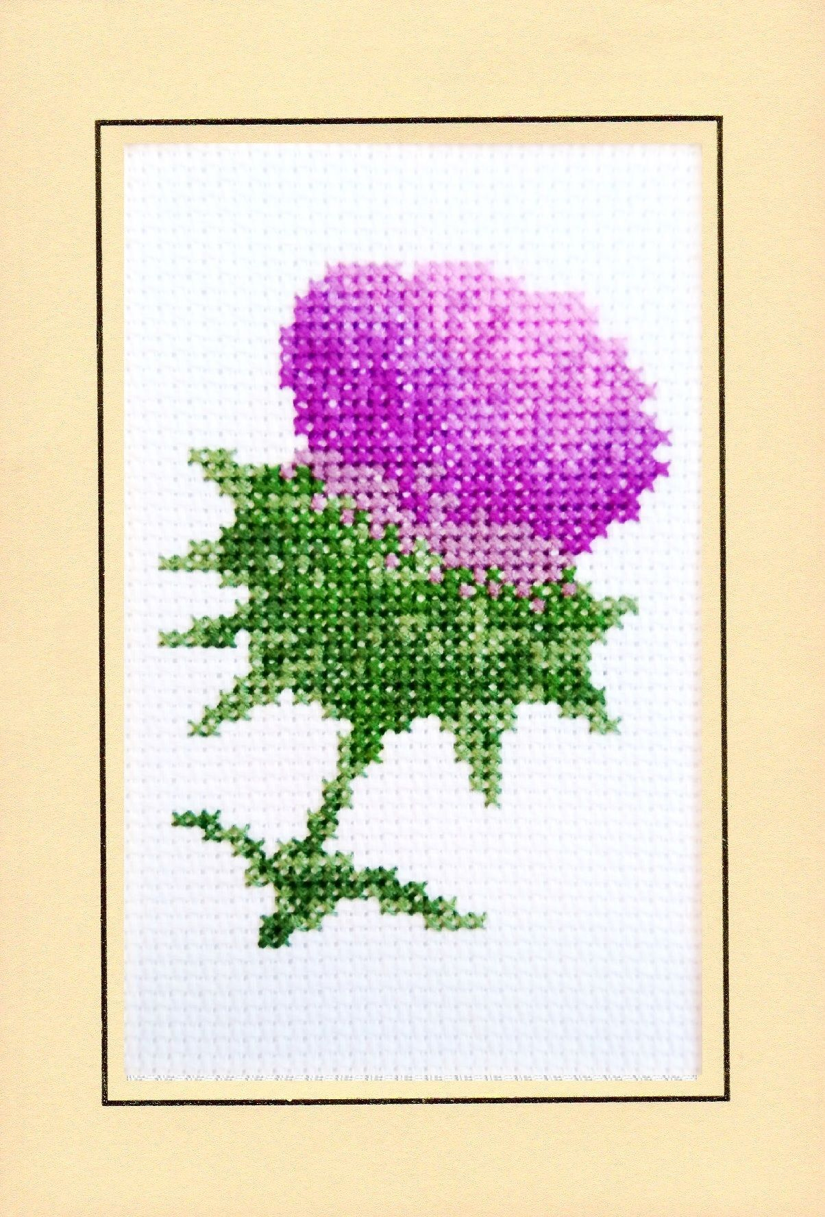Scottish thistle birthday plain a6 greeting cross stitch card kit scottish thistle birthday plain a6 greeting cross stitch card kit m4hsunfo